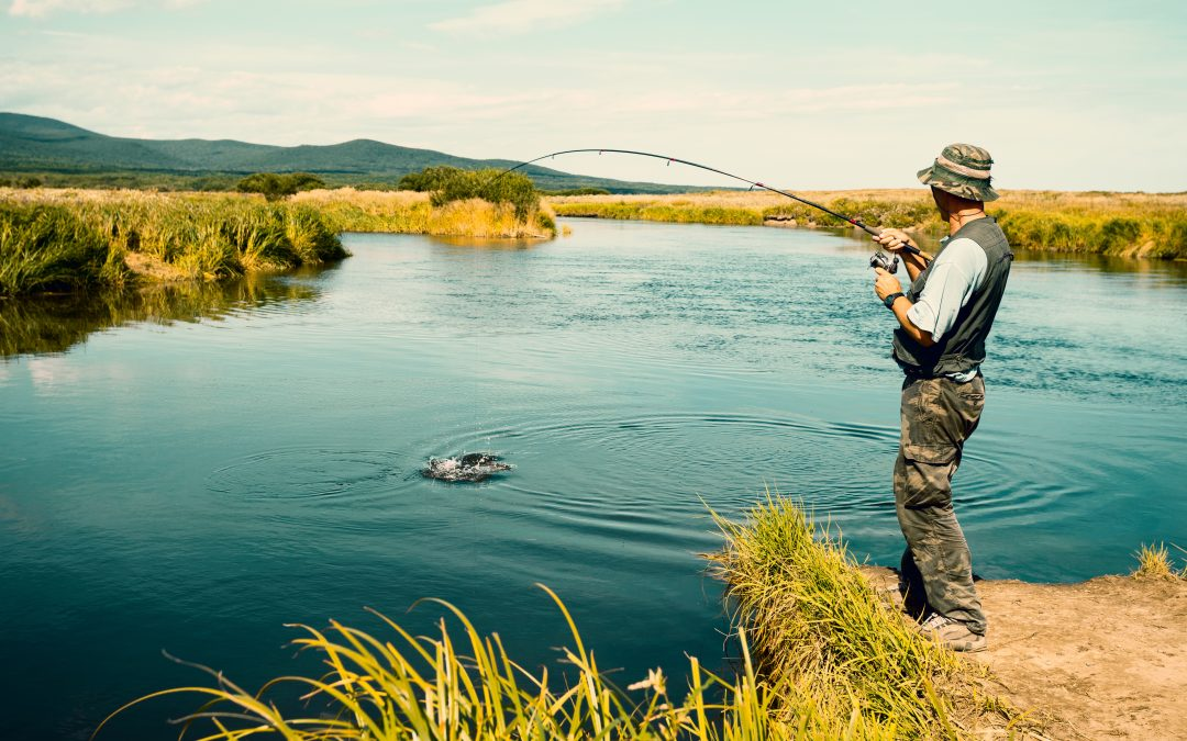 A Quick Guide to Freshwater Fishing