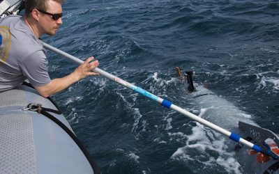 Best Boat Hook – Top 10 to Consider Buying for Yourself